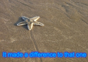 starfish difference
